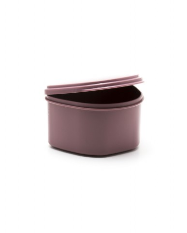 Denture Case/Bath - Mauve